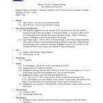 thumbnail of Minutes SAERA 26 May 2016-1
